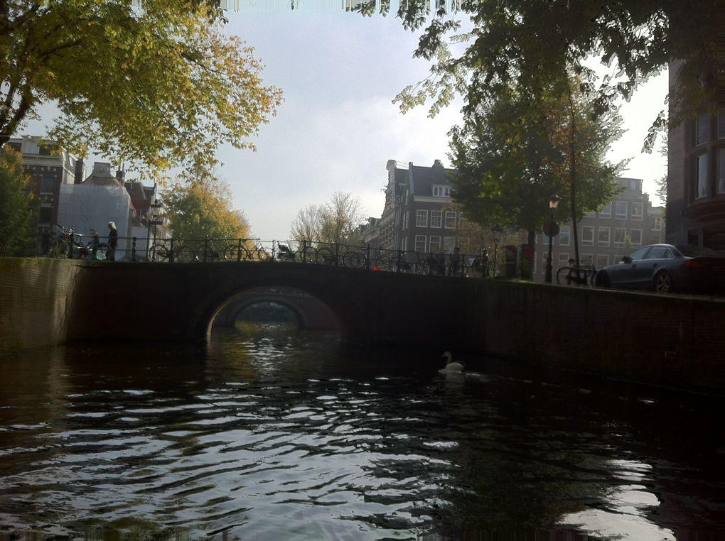 Album - Amsterdam 2012