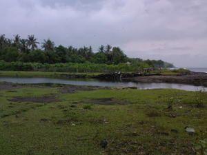 Album - Bali 2009