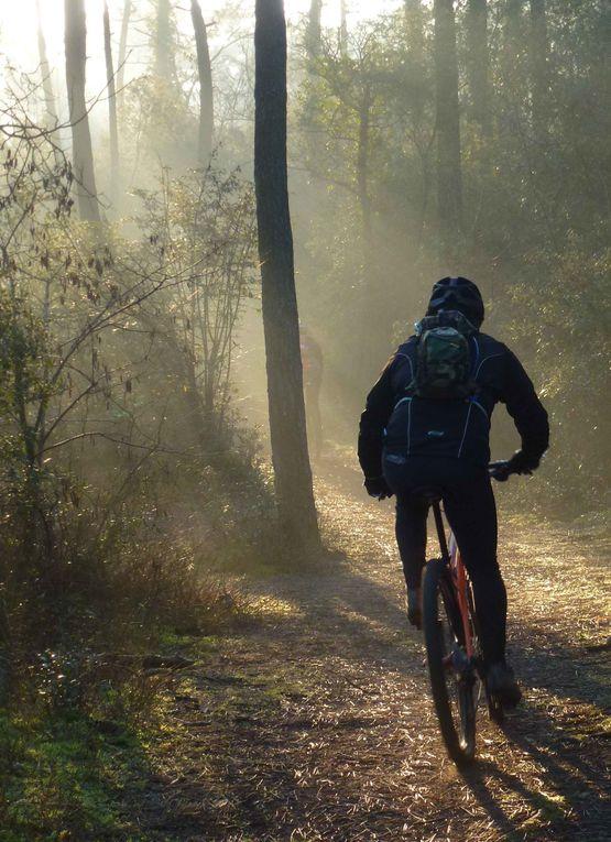 2 X 29' = plus de 58 mn de bonheur en forêt de St Jean de Monts