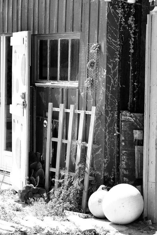 Cabanes d'Ostréiculteurs à Oléron - Photos Noir et Blanc de Thierry Weber - Photographe La Baule Guérande