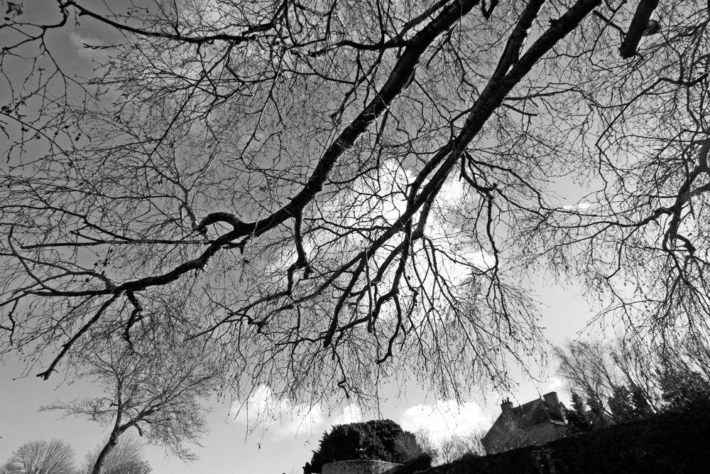 Les remparts de Guerande en hiver