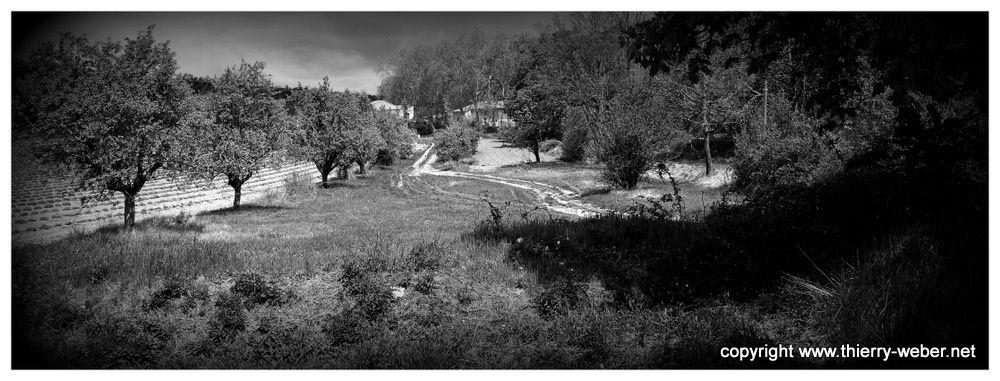 Paysages de Haute Provence - Photos Thierry Weber Photographe La Baule Guérande