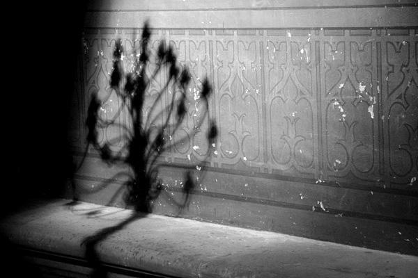 Album - Des Cathédrales ...