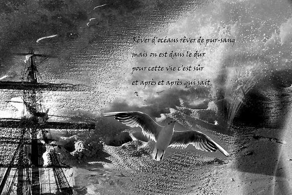 Album - Petites images en noir et blanc