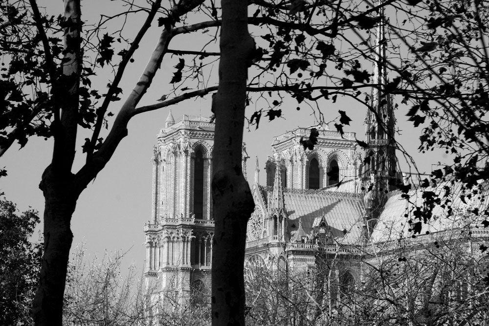 Album - Paris en photos