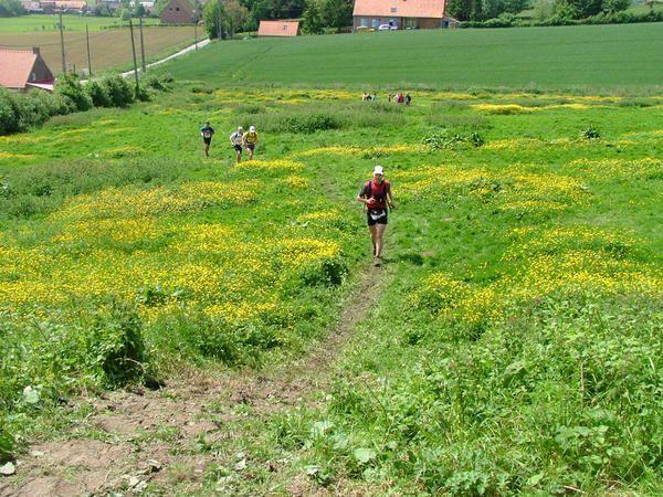 Album - Mon arrivée Trail la Sapinière