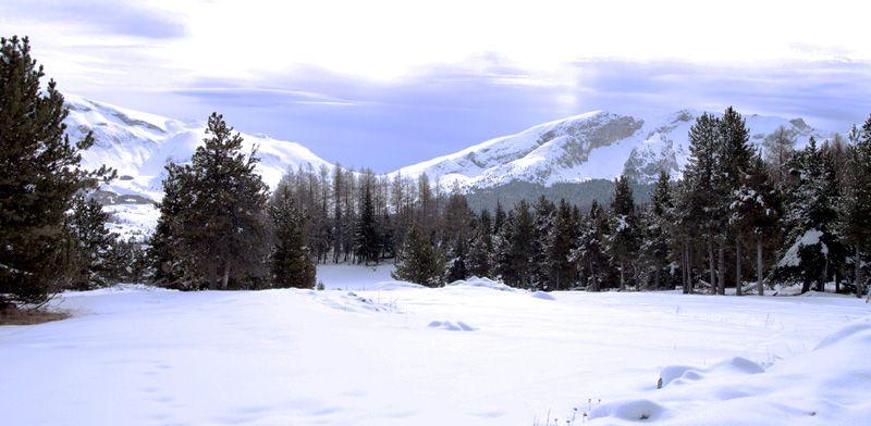 """Février 2011, paysages enneigés dans la station """"Super Dévoluy"""" des Alpes du sud."""