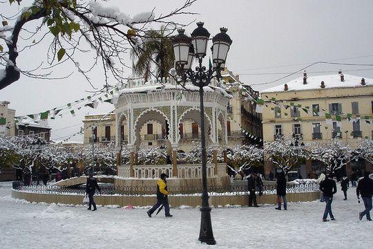 Algerie 2012 Le froid et la neige s abattent sur l AlgerieLe Pèlerin