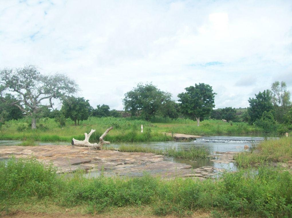 Découverte de la région de l'Est, tout près des frontières nigérienne et béninoise et presque au coeur des parc de l'Arly et du W...