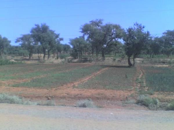 Voilà les paysages que je traverse en allant travailler dans les villages...