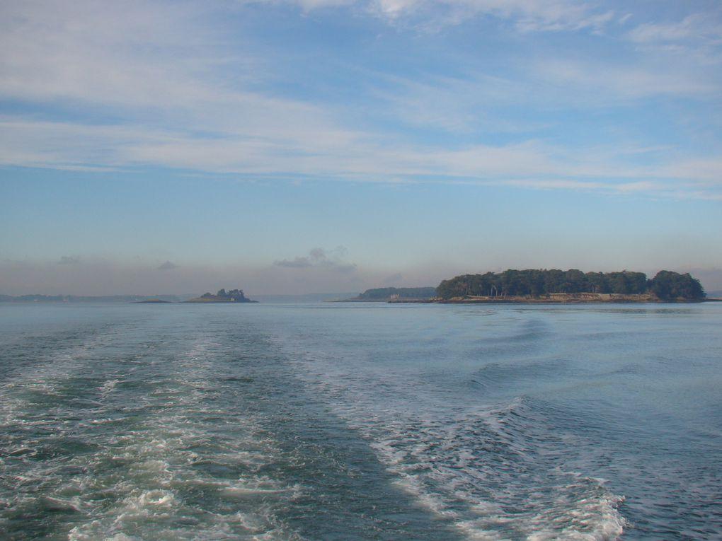 Visite en bateau sur le golfe en décembre 2009