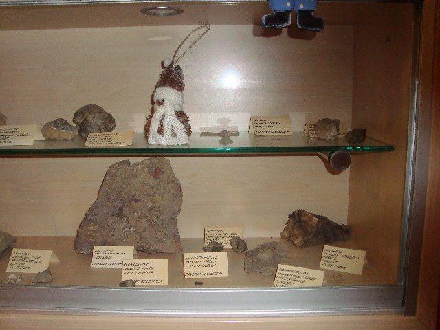 <p>Album des Musées ici et ailleurs</p><p>Il contient des photos de divers musées locaux et expositions permanentes.</p><p>Ces pièces n'appartiennent pas à notre collection.</p><p>Bonne visite !</p><p>Phil « Fossil »</p>