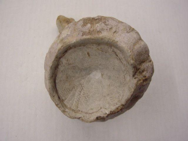 """<p></p><p>Les éponges fossiles sont, un peu comme les coraux, les mal-aimées des paléontologues amateurs !</p><p>Pourtant un grand nombre de formes, parfois très esthétiques, peuvent être découvertes dans les sédiments depuis l'Ordovicien jusqu'au Crétacé supérieur, après quoi elles se raréfient.</p><p>Toutes ces pièces font partie de ma collection personnelle.</p><p>Bonne visite !</p><p>Phil """"Fossil""""</p><p></p>"""