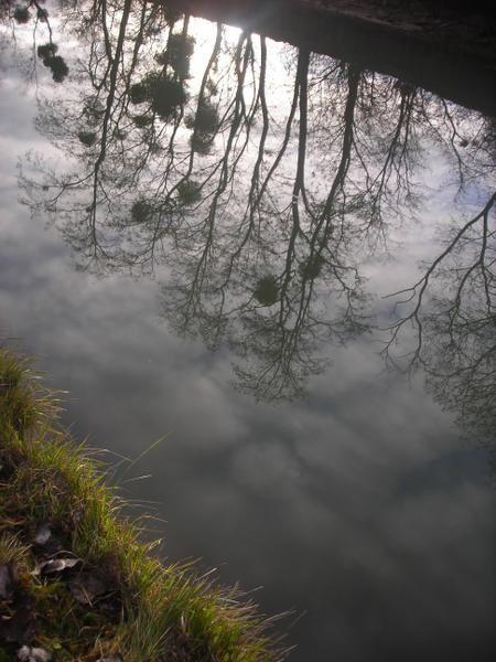 Le canal de L'Ourcq avec sa magie des reflets sur l'eau baigné d'une belle lumière en cette fin d'année donne un esprit très poétique à cette balade qui reprèsente plusieurs heures de marche entre Meaux et Esbly