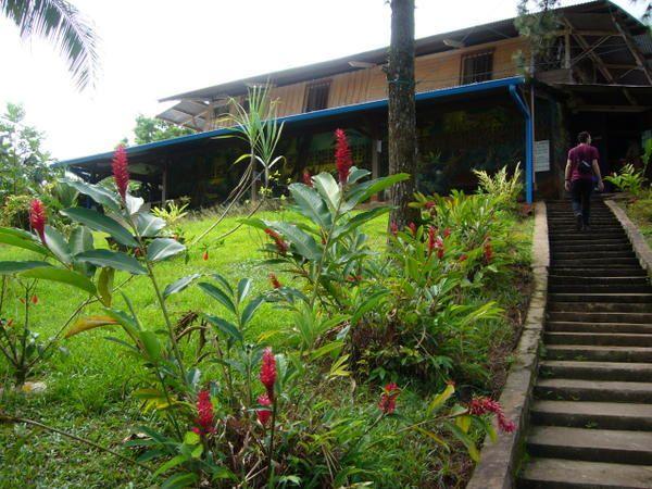 Quelques images tir&eacute&#x3B;es d'une journ&eacute&#x3B;e &agrave&#x3B; Cacao... D&eacute&#x3B;cembre 2006