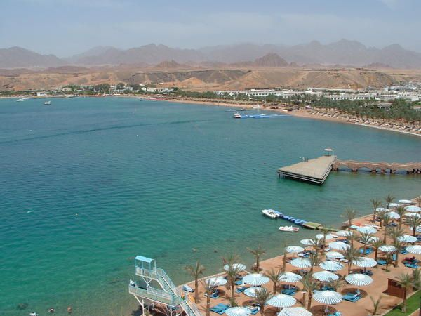 Album - beach-albatros-sharm-el-sheikh
