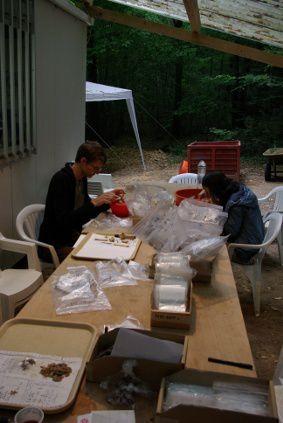 Quelques images de la campagne de l'été 2009