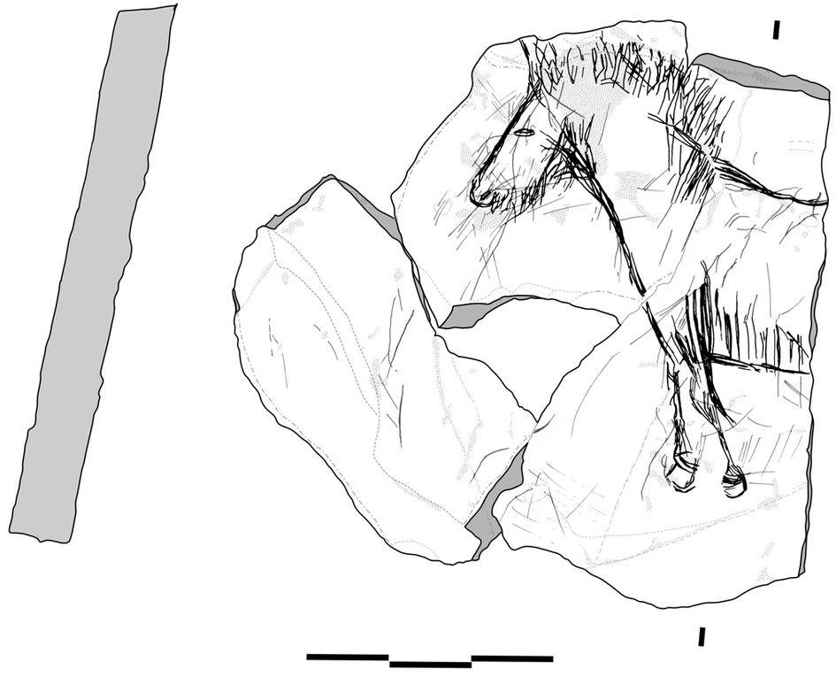 Quelques exemples du mobilier archéologique de la fouille du Taillis des Coteaux.