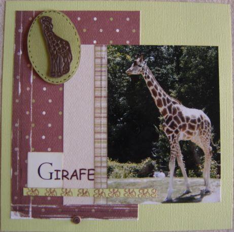 Album - Zoo-de-Beauval