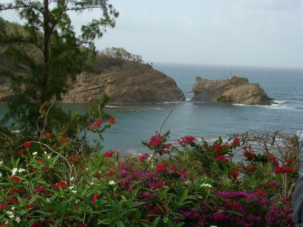 Le temps d'un aller-retour pour assister au mariage d'un ami. Quelques photos du Nord-Est de l'île.