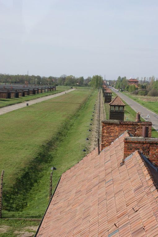 Auschwitz birkenau, Chocholow, Tatras, witow, Wroclaw, Varsovie