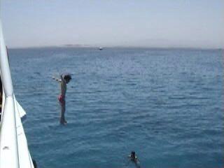 Plongée en mer rouge