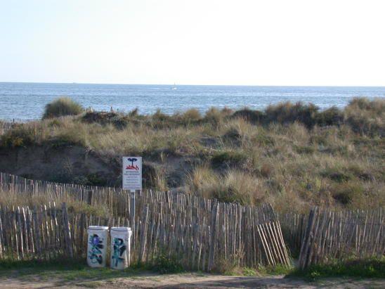 Entre Carnon et la Grande Motte dans l'Hérault. Un littoral préservé au milieu des dunes (espace appartenant au conservatoire du Littoral)