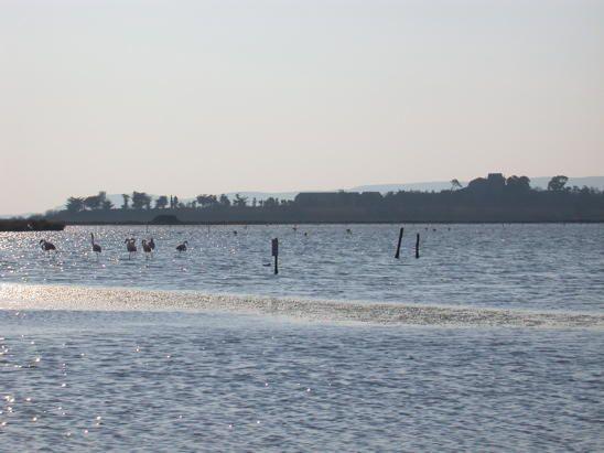 paysages littoraux de l'Hérault&#x3B;Sur le littoral du Languedoc, un lido séparant les étangs de la plage. Au bout une colline et une ville : Sète.