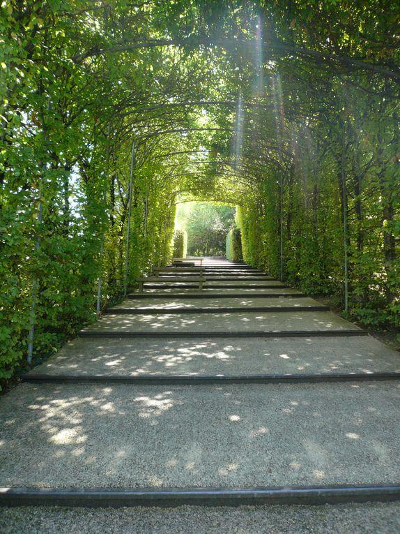 Album - Les Jardins de l'Imaginaire