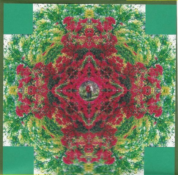 Au hasard de l'inspiration, surgissant de photos qui &quot&#x3B;parlent&quot&#x3B; au coeur,&nbsp&#x3B; de techniques tentantes &agrave&#x3B; exp&eacute&#x3B;rimenter sur nos pages,&nbsp&#x3B;de couleurs avec lesquelles nous avons envie de &quot&#x3B;jouer&quot&#x3B; ou d'embellissements tellement sympathiques qu'il faut absolument leur trouver une place !!!....