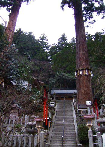 Album - Japon