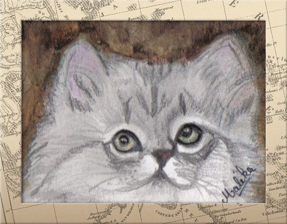 Album - Dessins-de-chats.