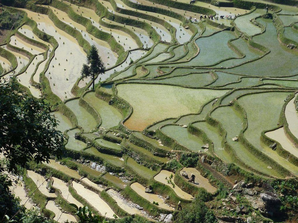 Album - voyage-au-Yunnan--Chine-