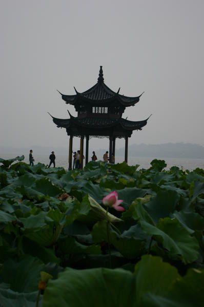 Album - Hangzhou