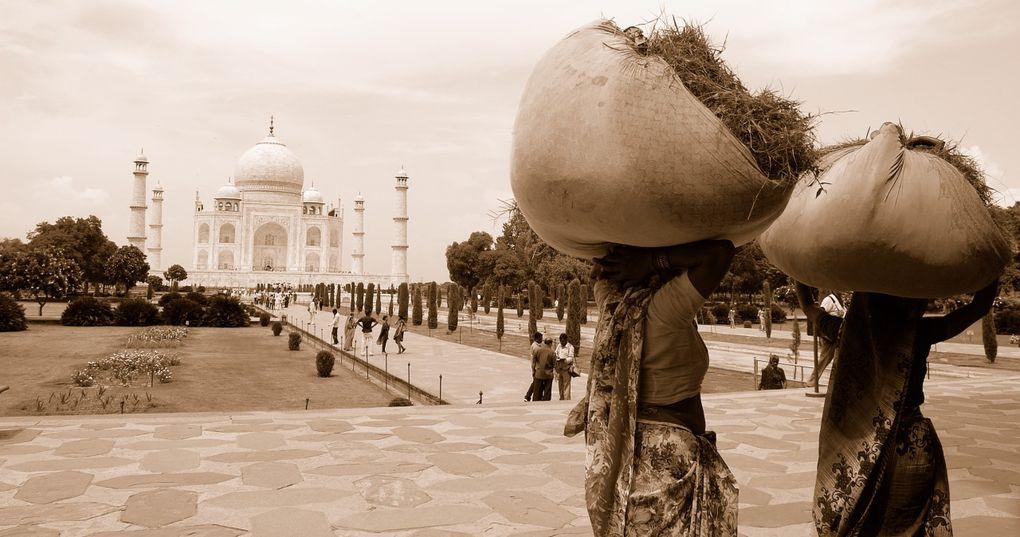 Voici l'album de mon retour en Inde en Aout 2009 ! Bonne visite...