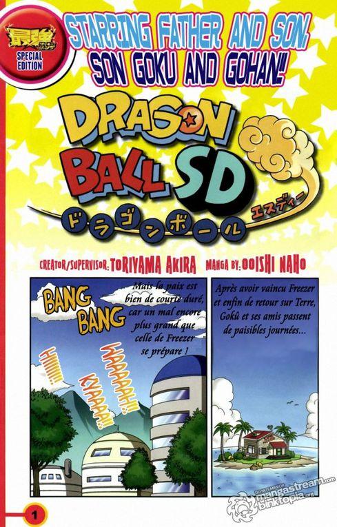 Traduit par Dragon Ball Book, que l'on peut remercier.