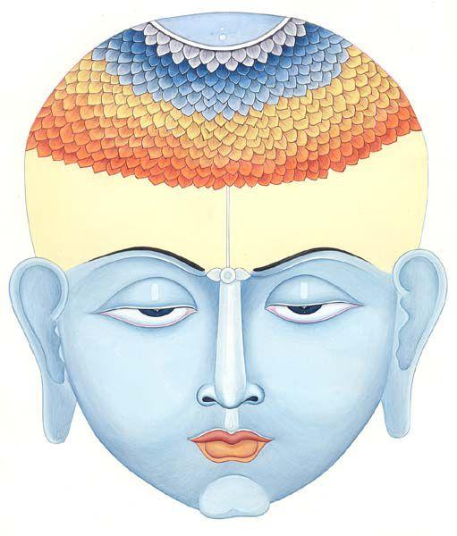diverses représentations des Chakra