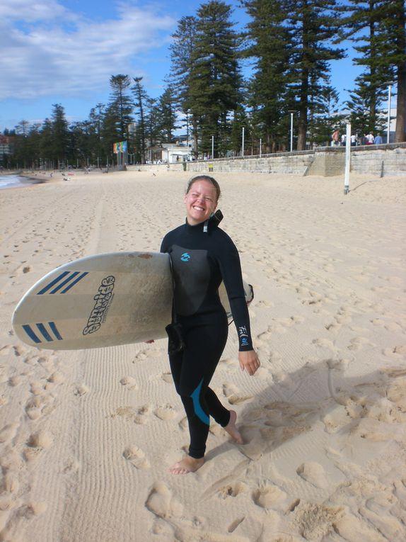 Photos des mes vacances en Australie - Cote Est entre Sydney et Airlie Beach