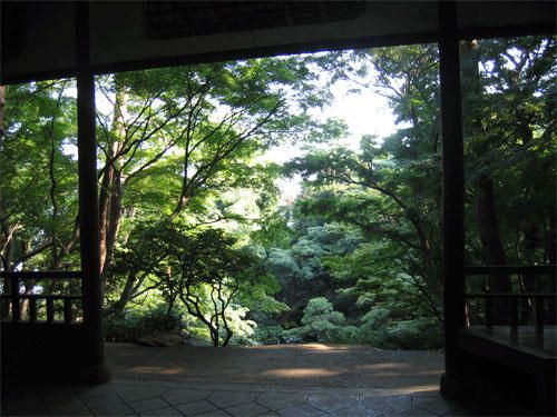 Très joli jardin à Kokubunji (à l'Ouest de Tokyo), appelé aussi le Repaire sacré des moustiques &#x3B;-)