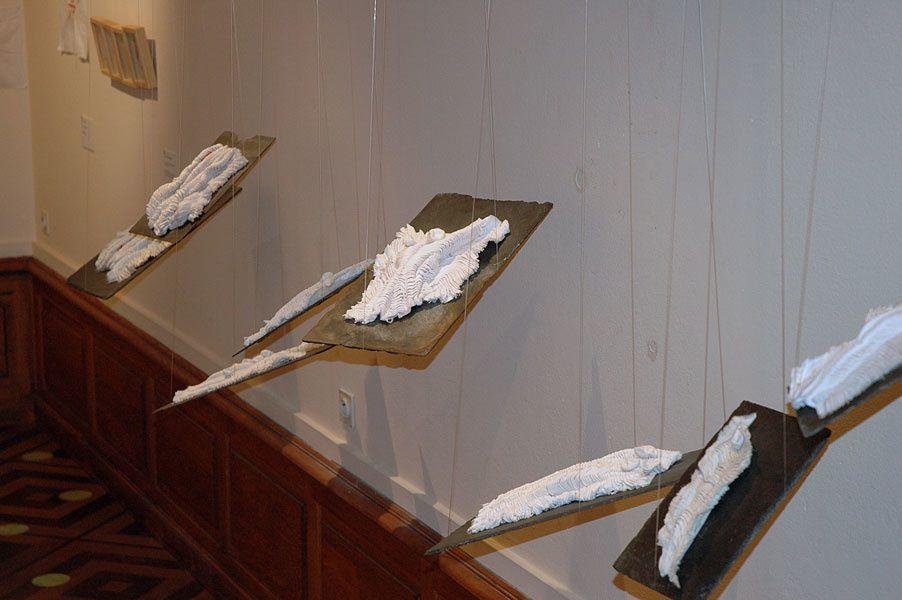 exposition novembre 2008