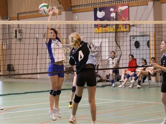 Album - Minivolleyades-2009