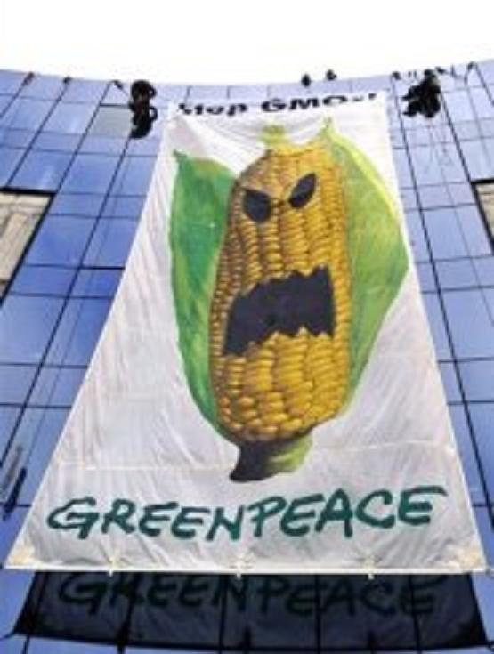 Une sélection sympathique d'images et de photos anti OGM. Je me suis aperçu que lorsqu'il s'agissait des OGM, les artistes étaient très inspirés et prolifiques! Alors voici ce que l'art fait de mieux lorsqu'il nous parle de ces bombes à retarde