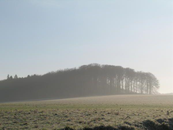 <p>L'hiver en for&ecirc&#x3B;t d'Eawy est magnifique. Les photos de cet album ont &eacute&#x3B;t&eacute&#x3B; prises sur Bellencombre, les&nbsp&#x3B;Ventes-Saint-Remy, Muchedent. Vous verrez entre autre une photo avec les bisons de Muchedent.</p><p>Si l'hiver est tr&egrave&#x3B;s beau en for&ecirc&#x3B;t, il est bien de venir&nbsp&#x3B;le constater par soit m&ecirc&#x3B;me. Alors, nous vous attendons pour que vous aussi, vous puissiez jouir de ce spectacle de la nature.&nbsp&#x3B;</p>