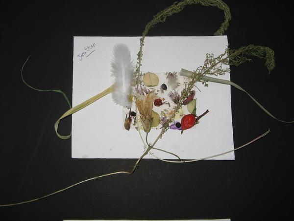 Album - palette-du-peintre