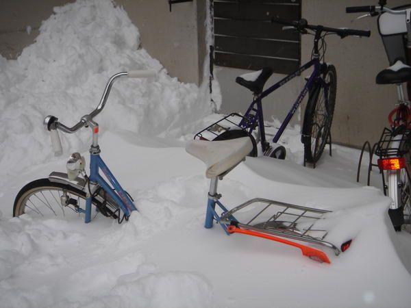 Album - la-neige