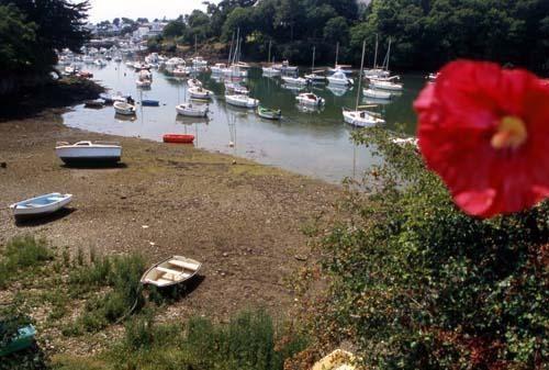 Cette galerie d'images a été mise à jour. Depuis janvier 2011, vous pouvez vous rendre sur le site : http://www.bretagne-photo.fr