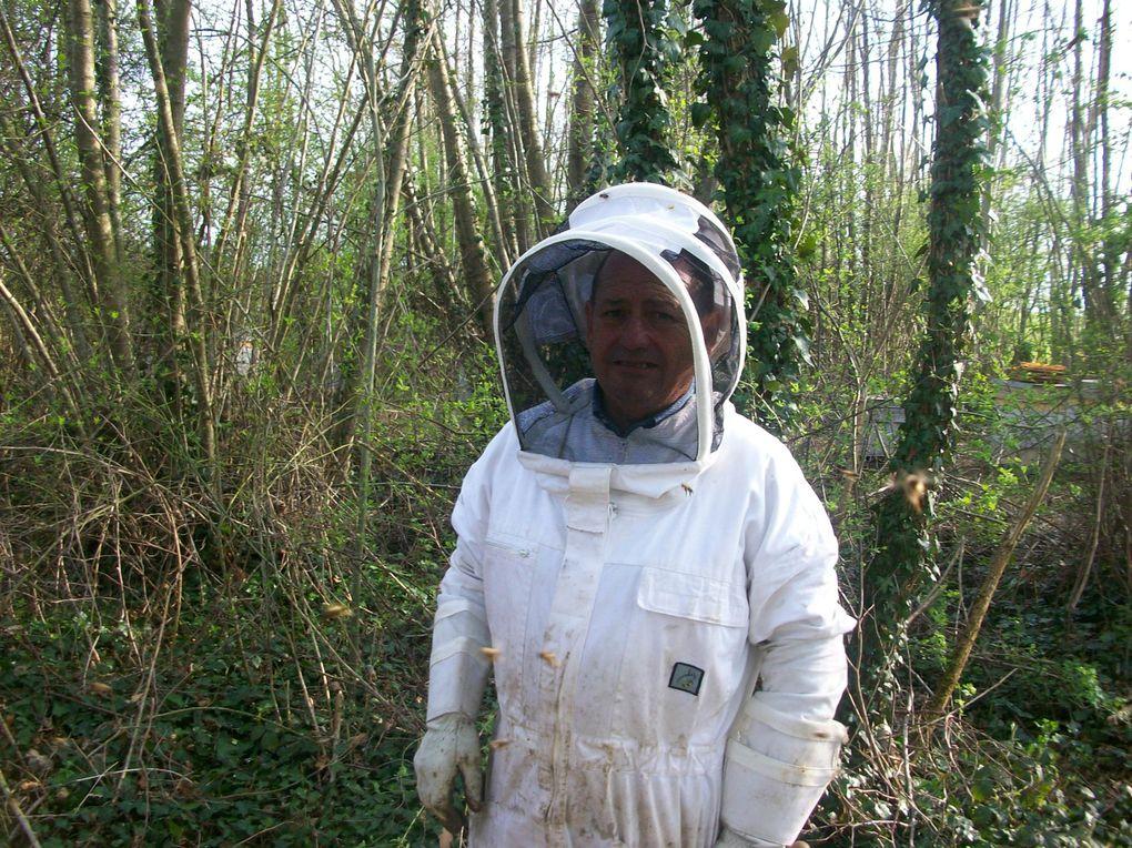 nos travaux de l'année 2009 dans nos ruchers Api 4 de Côte d'orHervé Joël Paul Jacqueline