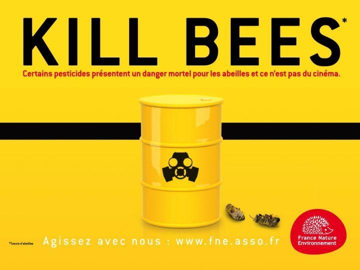 quelques images prises durant les réunions et conférences apicoles de l'année 2010
