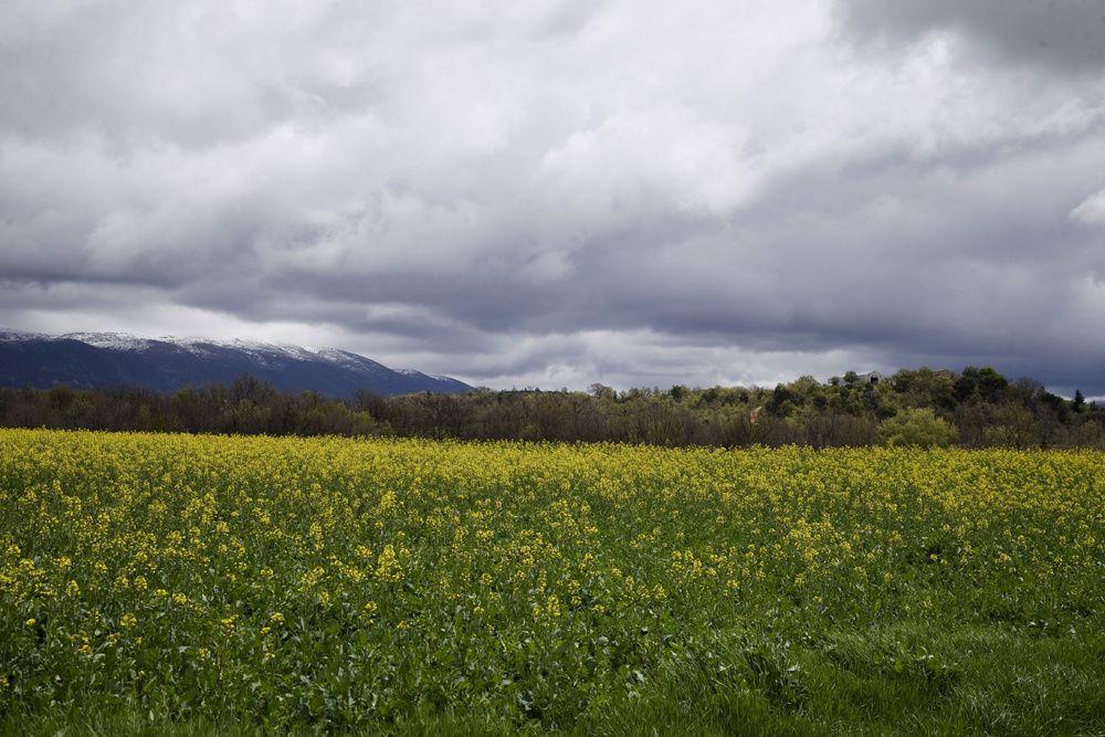 Paysages des Alpes de Haute Provence - Photos Thierry Weber Photographe La Baule Guérande