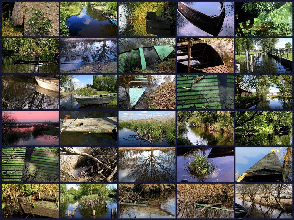 Photos du Parc de la Brière - Photos Thierry Weber Photographe de mer à La Baule Guérande